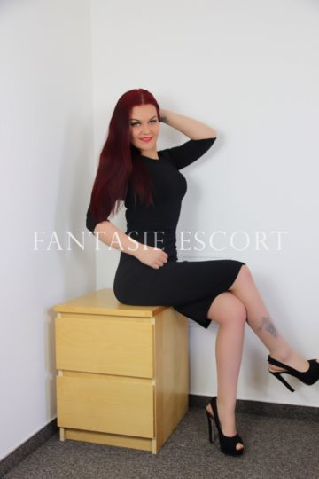 dando escort agency in vienna